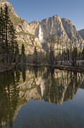 Monoliths Posters - Morning Reflections in Yosemite Poster by Sandra Bronstein