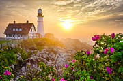 New England Lighthouse Posters - Morning Rose Poster by Benjamin Williamson