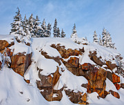 Snow Scenes Metal Prints - Morning Snow Metal Print by Darren  White