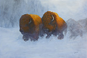 Snow Scene Painting Originals - Morning Stampede by Johanna Lerwick