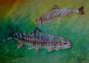 Cutthroat Trout Originals - Morning Sunlight by Laurie Penrod