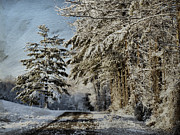 Winter Landscapes Metal Prints - Morning Walk Metal Print by Kathy Jennings