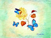 Linda Ginn - Morph Butterflies on...