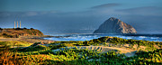 Seascape Greeting Cards Prints - Morro Rock and Beach Print by Steven Ainsworth