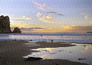 Sea Birds Prints - Morro Rock Park Print by Sharon Foster
