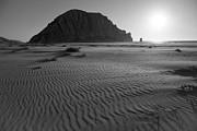 Terry Garvin - Morro Rock Silhouette