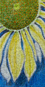 Mosaic Drawings - Mosaic Daisy by Patricia Januszkiewicz
