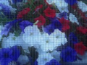 4th July Digital Art Prints - Mosaic Patriotic Petunias Print by Margaret Newcomb