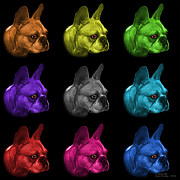 James Ahn - Mosiac French Bulldog...