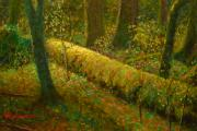 Terry Perham Prints - Moss Print by Terry Perham