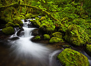 Outdoor Photography Posters - Mossy Arch Cascade Poster by Darren  White