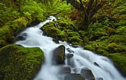 Lush Green Posters - Mossy Creek Cascade Poster by Darren  White