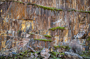 Connie Cooper-Edwards - Mossy Granite Canyon Wall