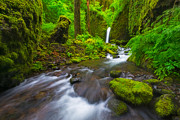 Columbia River Prints - Mossy Grotto  Print by Joseph Rossbach