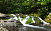 Miraculous Photos - Mossy Mountain Falls by Robert Harmon