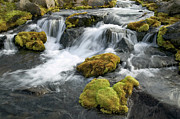 Water Flowing Framed Prints - Mossy Rocks In Stream in Iceland Framed Print by Cyril Ruoso