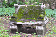 Stone Bench Prints - Mossy Stone Bench Print by Bill Cannon
