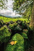 Dry Stone Wall Framed Prints - Mossy Wall Framed Print by Adrian Evans