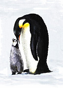 Penguin Metal Prints - Mother And Baby Penguin Metal Print by Jane Schnetlage