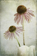 Flower Blossom Metal Prints - Mother and Daughter Metal Print by Marion Galt