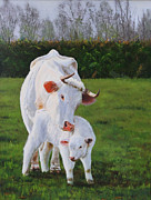 Lepercq Veronique Metal Prints - Mother And Her Calf Metal Print by Lepercq Veronique
