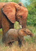 Elephant Painting Posters - Mother Love 2 Poster by David Stribbling
