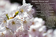 Mother Teresa Framed Prints - Mother Teresa said Framed Print by Roger Reeves