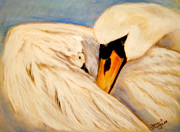 Swans... Pastels Prints - Mothers Love Print by Sharon Schumann