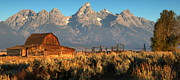 Moulton Barn - The Tetons Print by Stephen  Vecchiotti