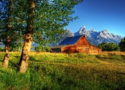 Grand Tetons Framed Prints - Moultons Barn 3 Framed Print by Mel Steinhauer