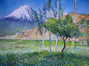 Enver Larney - Mount Ararat North...