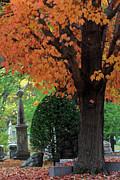 Juergen Roth - Mount Auburn Cemetery - Cambridge - Massachusetts