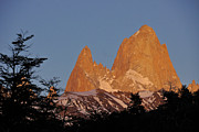 Fitz Art - Mount Fitz Roy at Sunrise by Michele Burgess
