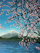 Cherry Blossoms Paintings - Mount Fuji Cherry Blossoms by Sheena Kohlmeyer