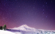 Night Photography Photos - Mount Hood and Stars by Darren  White
