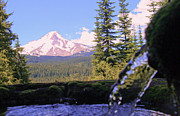 Cari Gesch Metal Prints - Mount Hood from Buzzard Point Metal Print by Cari Gesch