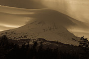Cari Gesch Metal Prints - Mount Hood in the Clouds Metal Print by Cari Gesch