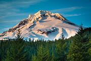 Inge Johnsson - Mount Hood Winter
