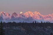Moon Set Prints - Mount Hunter Moon Rise Print by Tim Grams