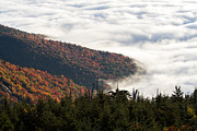 John Haldane Prints - Mount Mitchell Morning Print by John Haldane