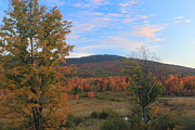 Monadnock Region Posters - Mount Monadnock and Autumn Wetland Poster by John Burk