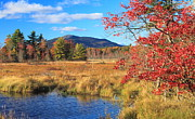 Monadnock Region Posters - Mount Monadnock Autumn from Scott Brook Poster by John Burk