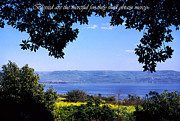 Sea Of Galilee Prints - Mount of the Beattitudes Print by Thomas R Fletcher