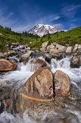 Adam Romanowicz - Mount Rainier Glacial Flow