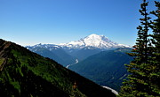 Crystall Framed Prints - Mount Rainier Seen from Crystal Mountain Summit  4 Framed Print by Tanya  Searcy
