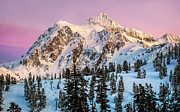 Sunset; Ice Prints - Mount Shuksan at Sunset Print by Alexis Birkill