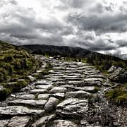 Mount Snowdon Path Print by Jane Rix