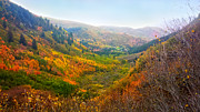 Turning Leaves Prints - Mount Timpanogos Vally Utah  Print by Edward Pollick