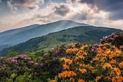 Crepuscular Rays Posters - Mountain Aflame Poster by Rob Travis