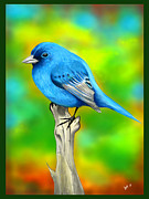 Bluesky Digital Art Framed Prints - Mountain Blue Bird Framed Print by Luis Padilla